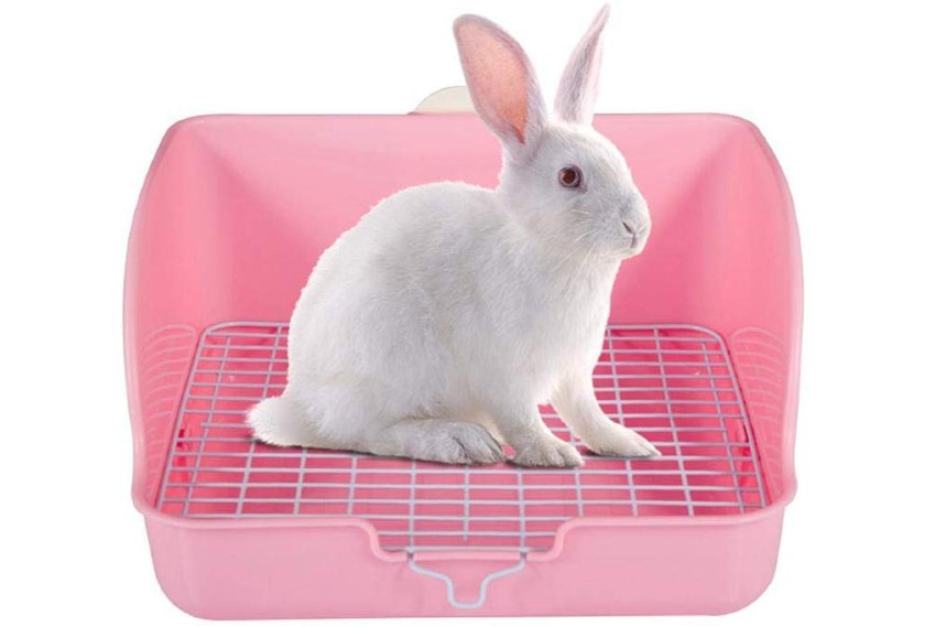 best cheap litter box