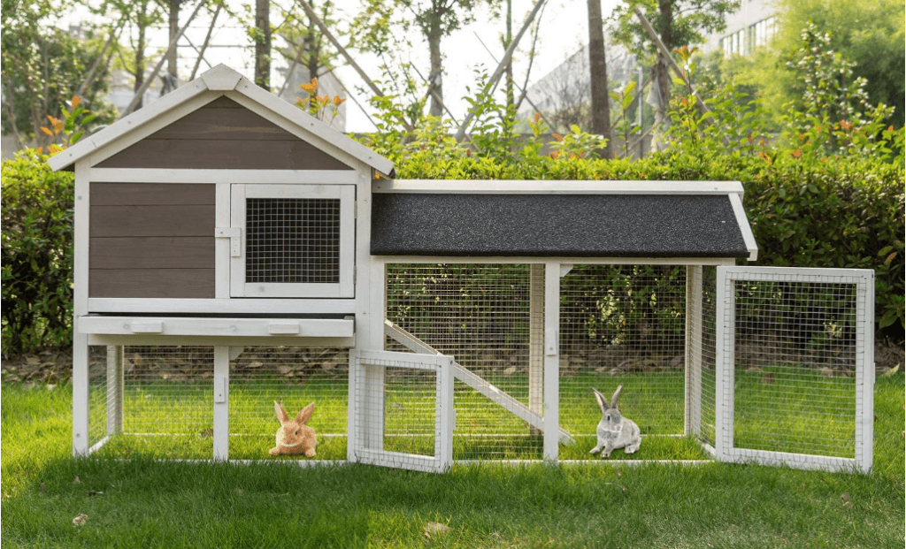 Indoor Rabbit Hutch vs Outdoor Rabbit Hutch