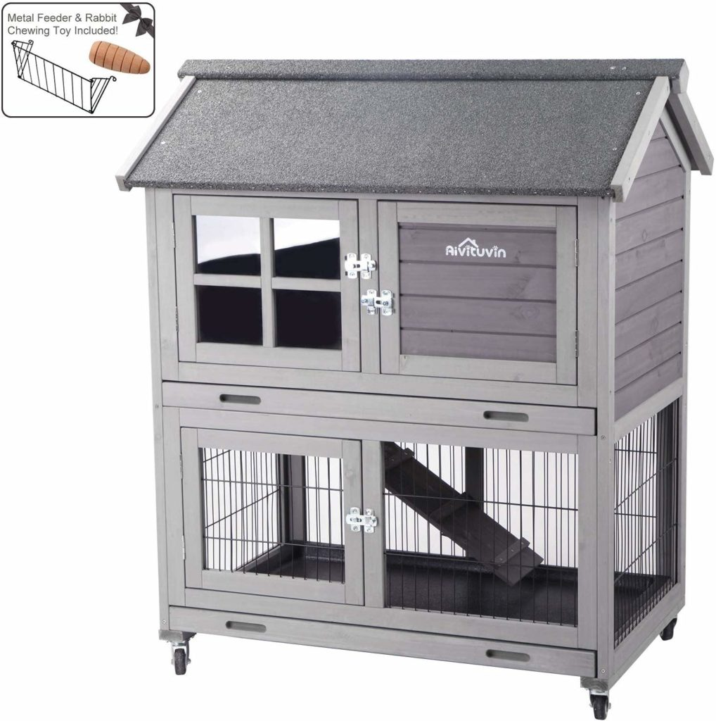 rabbit cage vs rabbit hutch